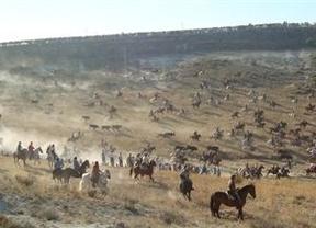 Castilla-La Mancha regula los festejos taurinos populares