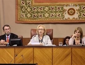 "Inadmisible la llamada, ""ley Arizona"", senador Villarreal"