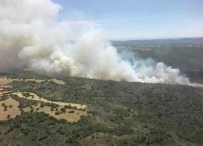 Decretado el nivel 2 de alerta en el incendio de Valdeconcha (Guadalajara)