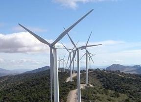 Endesa, Enagás, Repsol, Gas Natural Fenosa, CLH, Cepsa, ACS y FCC se unen en una fundación