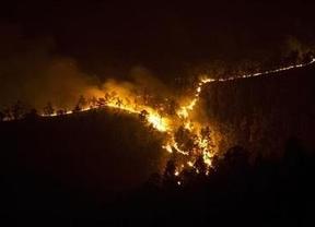 La superficie quemada en Castilla-La Mancha se reduce un 90% en verano
