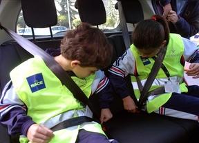 Los mayoría de niños con discapacidad viajan de forma insegura en los vehículos