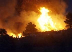 Cinco incendios simultáneos 'abrasan' la provincia de Guadalajara