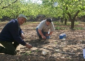 Discrepancias en Castilla-La Mancha tras la reforma de la Política Agraria Comunitaria