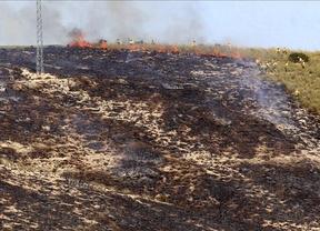 Muere un hombre en un incendio forestal en Valdeganga (Albacete)