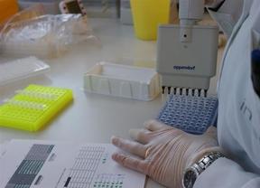 Identifican los genes que influyen en la altura de las personas
