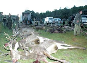 Sanidad garantizará calidad y seguridad de la carne de caza mediante un decreto