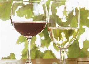 Aragón presume de enoturismo, sus tres Rutas del Vino se agrupan