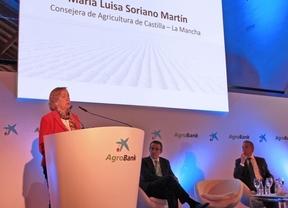 Soriano avanza que la producción de vino y mosto en Castilla-La Mancha será un 32% menos que en 2013