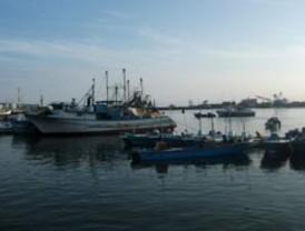 Mar se retira 30 metros en Islas Galápagos