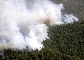 Castilla-La Mancha ha reducido a casi la mitad el presupuesto para incendios forestales desde 2010