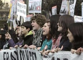 Huelga contra la LOMCE: los estudiantes cifran en un 80% el seguimiento en institutos y en un 50% en universidades