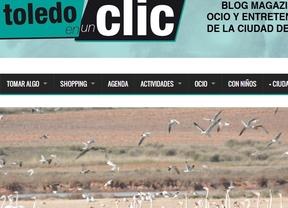 'Toledo en un clic' finalista en los Premios 20 blogs