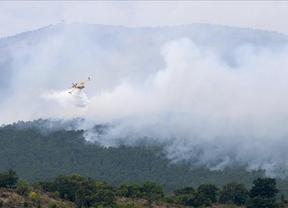 Podemos Guadalajara pide la dimisión de Mª Luisa Soriano por la gestión de los incendios