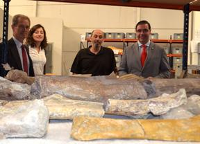 La Diputación apuesta por la marca turística 'Dinosaurios de Cuenca'