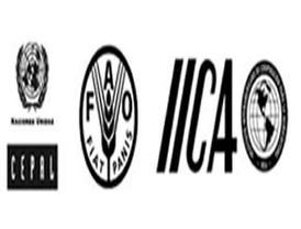 CEPAL, FAO e ICCA estudian la volatilidad precios alimentos, AL