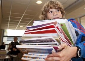 Una madre consigue llevar al Congreso la propuesta de crear un banco de libros de textos gratuitos
