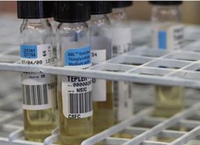 Científicos españoles descubren células 'fantasma' que causan la resistencia del cáncer a la quimioterapia
