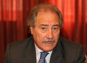 Moltó formaliza la solicitud para suspender su militancia en el PSOE