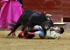 Enrique Ponce resulta herido tras una espectacular cogida en la Feria de Fallas