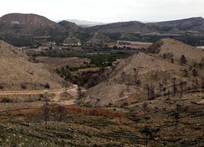 Restaurar la zona afectada por el incendio de Hellín ha costado 6,2 millones de euros