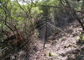 Ecologistas denuncia a Alberto Cortina por poner un vallado cinegético en Cabañeros