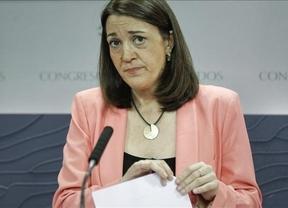 El PSOE propone crear un mecanismo que destituya a un presidente que mienta en el parlamento