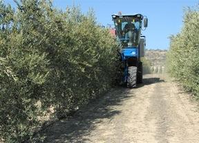 Castilla-La Mancha confía en que no haya