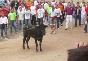 Juan Ávila pide a la Junta ayuda para promocionar la Feria de San Mateo