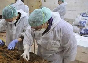 El Ayuntamiento desmiente que 'a día de hoy' se hayan encontrado los restos óseos de Cervantes
