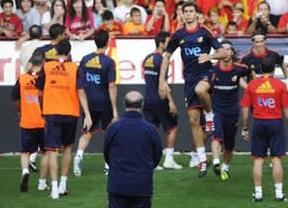 Torres y Mata se incorporan a 'La Roja' que empieza la defensa de la Eurocopa con varios amistosos