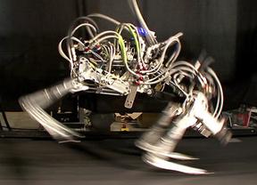 El robot 'Guepardo', el más rápido de su clase: se mueve a 29 kilómetros por hora