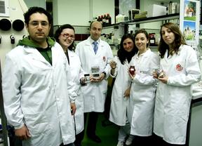 Ignacio Gracia y Luis Antonio Gómez, profesor y alumno, 'meterán' los ajos de Las Pedroñeras en el botiquín