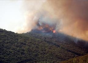 Declarado un incendio que afecta al parque de Cabañeros