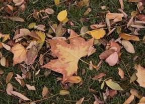 Castilla-La Mancha tendrá un otoño de