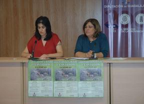 Cantalojas acoge este sábado la XXIX Feria del Ganado