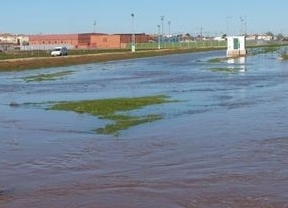 El río Azuer se desborda a su paso por Daimiel (Ciudad Real)