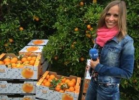 Naranjas Quique recibe la visita de España Directo - TVE para hablar de los beneficios de las naranjas