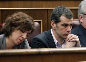 Un diputado del PP le pide a Toni Cantó que vuelva a la