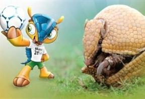Brasil se compromete a proteger el armadillo, la mascota del Mundial que está en vías de extinción,