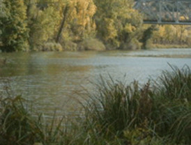 El II Plan de Restauración de Riberas del Duero cuenta con una inversión de 3,5 millones