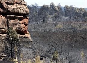 La Junta dice que el incendio de Chequilla está