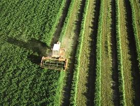 Los agricultores andaluces no contaran con financiación autonómica para contratar el seguro agrario