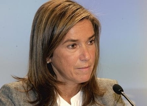 El Constitucional suspende las medidas sanitarias aprobadas en Andalucía y Euskadi