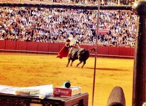 El Juli, herido en el primer toro del festejo en la Maestranza