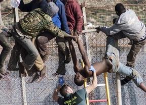 Unas 2.200 personas han entrado en Melilla por la valla este año