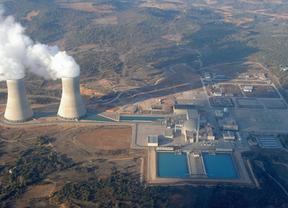 El Congreso pide que se verifique la seguridad de las centrales nucleares
