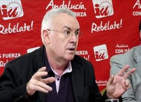 Cayo Lara se posiciona: para él el único arma de los sindicatos para defenderse es la huelga