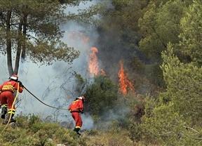 El Gobierno movilizará a los parados, pero... ¡para luchar contra los incendios!