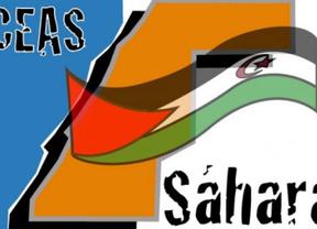 Los cooperantes desafían al Gobierno: irán al Sahara con ayuda humanitaria
